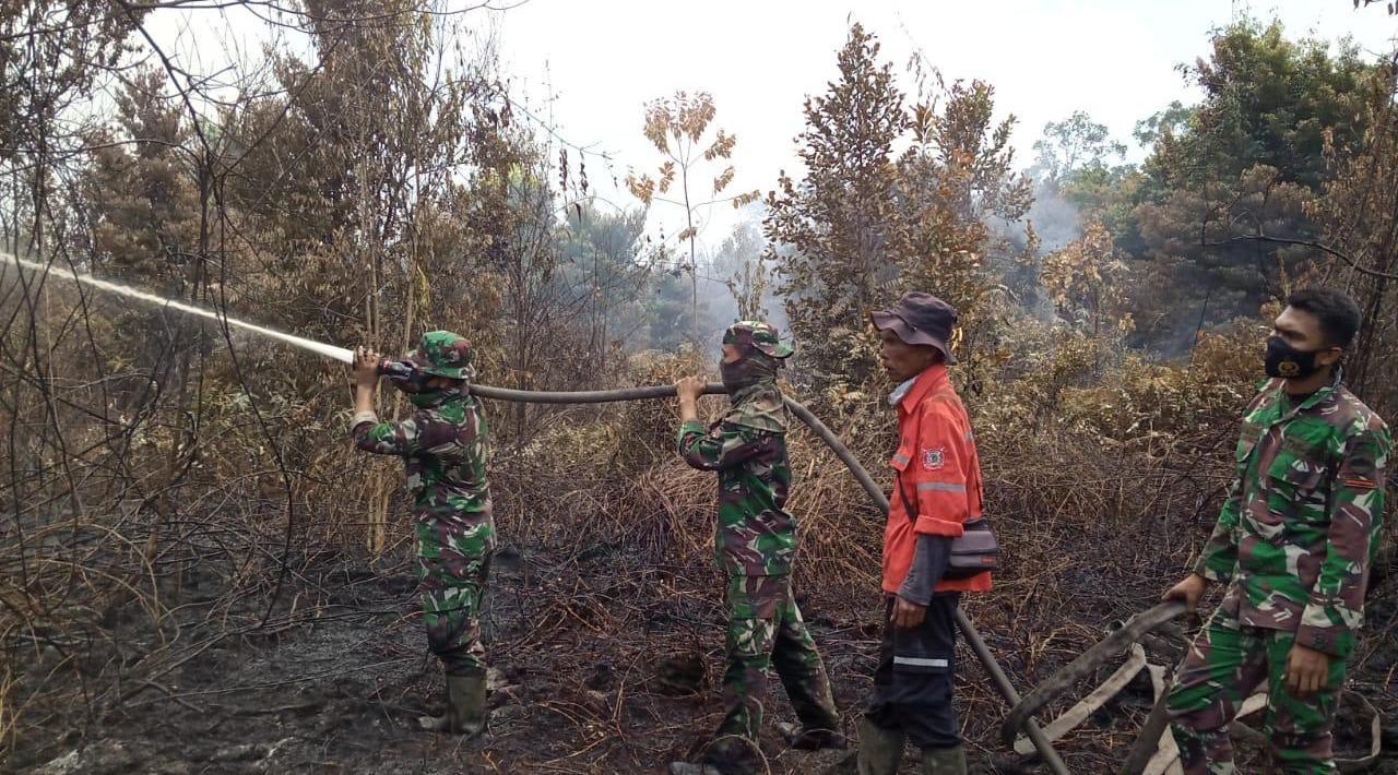 Koloborasi Perusahaan, TNI/Polri, Pemerintah dan Masyarakat, Karhutla di Tasik Serai Berhasil Dipadamkan